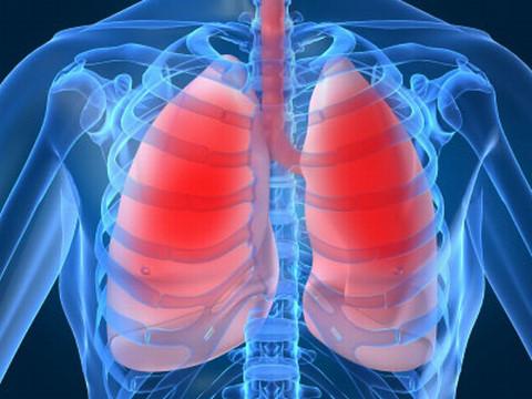 6 vật dụng trong nhà gây hại cho phổi