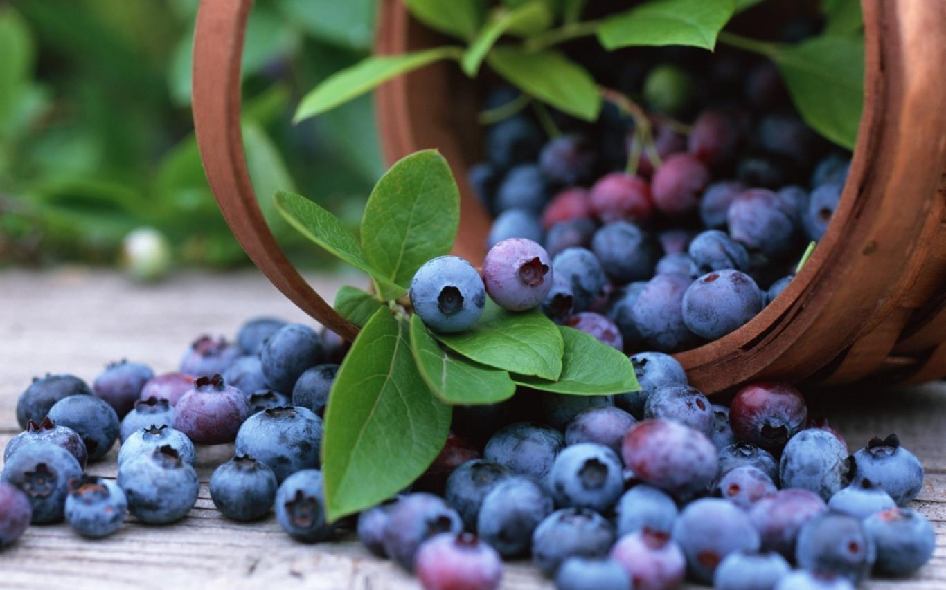 Những siêu thực phẩm có lợi cho tim mạch